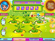 Play Lunas magic flower shop Game