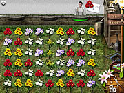Play free game Flower Mania