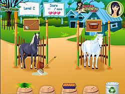 Maglaro ng libreng laro Horse Care Apprenticeships