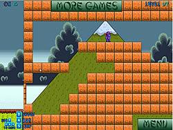 Ninja Adventures game
