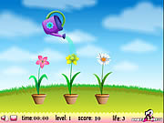 Play Flower watering Game