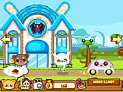 Play Daily pet city Game