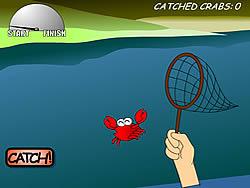 Gioca gratuitamente a Catch A Crab 1