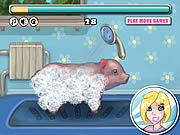 Play Clean little piggy Game