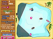 Play King pirate s treasure Game