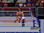 Play Wwf royal rumble 1993 Game