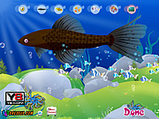 Play Aquarium fish decor Game
