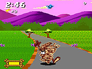 Play Taz-mania 1993 Game
