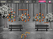 Play Coconut arrow shooting Game
