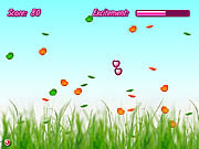 Play Bubble flies Game