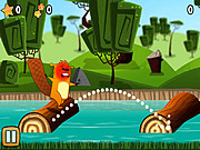 Play Youda beaver Game