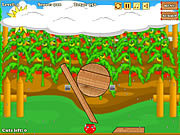 Play Uncover tomato Game