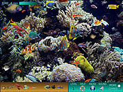 Play Hidden world underwater Game