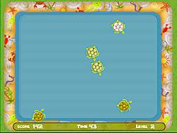 Turtle Pool game
