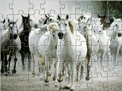 White Horse Jigsaw game