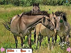 Hidden Rings Horses game