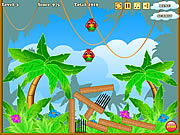 Birds Defenders game
