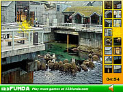 Play Hidden spots aquarium Game