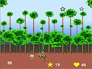 Super Raccoon game