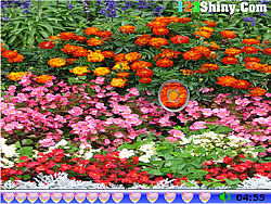 Hidden Hearts Flower Garden game