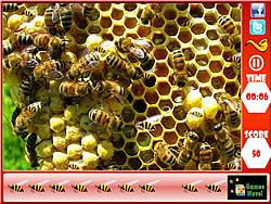 Honeycomb - Hidden Bees game