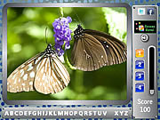 Butterfly - find the alphabets Gioco