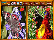 Butterfly similarities game Gioco