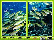 Underwater Similarities game
