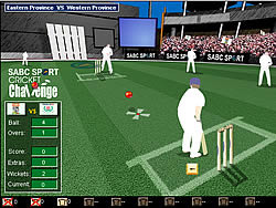 Jogar jogo grátis Cricket Challenge