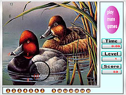 Fabulous Ducks Hidden Numbers game