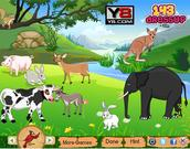 juego Jungle Animals Decor