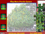 Juega al juego gratis Orange Tree Jigsaw Puzzle