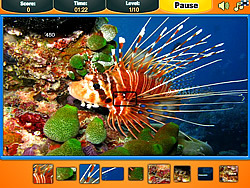 Ocean Pieces game