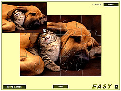 Cute Cat And Dog game
