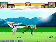 Play Red blood fighter Game
