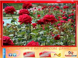 Puzzle Craze - Rose Garden game
