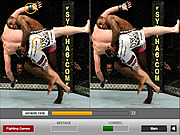 Play Ultimate fighting differences Game