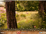 Play The flower seeker Game