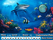 Play Fish hidden letters Game