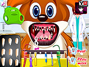 Play Animal dentist Game