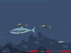 Играть бесплатно в игру Mad Shark