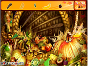 Thanksgiving Turkey Hidden Objcet game