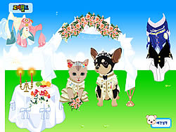 Pet Wedding Dress up game