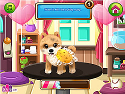 Paws to Beauty: Valentine Edition game