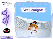 Play Crazy sledging Game