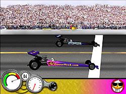 Goosehead Racing game