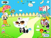 Play My cute pet dressup Game